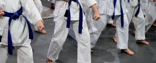 <h1>7 Health Benefits You Will Gain from Martial Arts Training</h1>