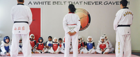 How To Encourage Your Childs Success in Martial Arts