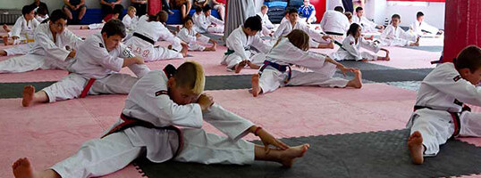 <h1>How Martial Arts Can Improve Academic Performance</h1>